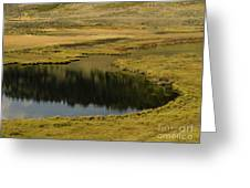 Yellowstone River Pond Greeting Card