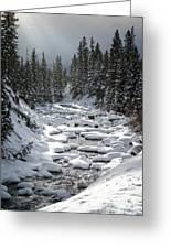 Yellowstone -  Soda Butte Creek Greeting Card