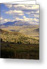 Yellowstone View Greeting Card