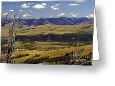 Yellowstone Vista 2 Greeting Card