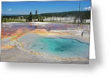 Yellowstone's Firehole Greeting Card