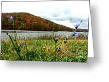 Yellowwood Lake, Southern Indiana Greeting Card