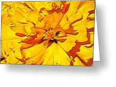 Yelow Tulip Greeting Card