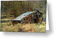 Yesteryear Shed 2 Greeting Card by Dale Stillman
