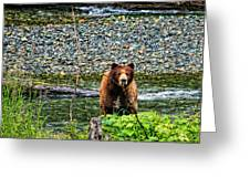 Yikes, It's A Grizzly Greeting Card