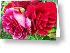 Ying Nyang Greeting Card