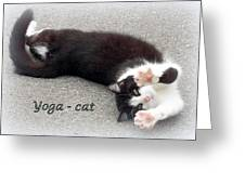 Yoga - Cat Greeting Card