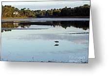 York River, Maine Greeting Card