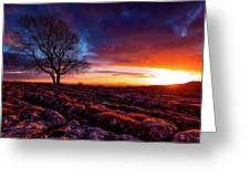 Yorkshire Beauty Greeting Card