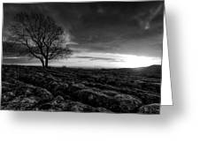 Yorkshire Serenity Greeting Card