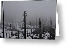 Yosemite 11 Greeting Card