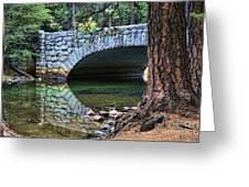 Yosemite Creek Greeting Card