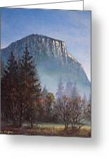 Yosemite Dawn Detail Greeting Card
