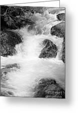 Yosemite Raging River Stream Greeting Card