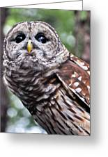 You Can Call Me Owl 2 Greeting Card