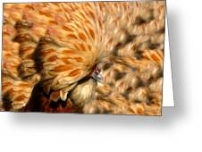 You Chicken  Greeting Card