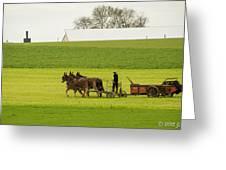 Young Amish Farmer Greeting Card