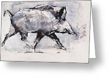 Young Boar Greeting Card