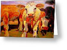Young Cow Greeting Card