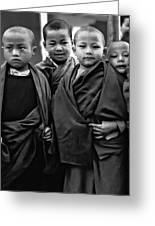Young Monks II Bw Greeting Card