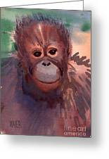 Young Orangutan Greeting Card