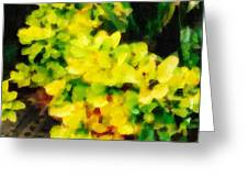 Young Plant Greeting Card