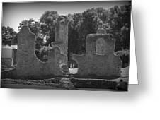 Young Ruins Greeting Card