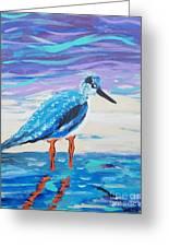 Young Seagull Coastal Abstract Greeting Card