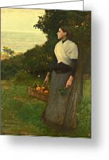 Young Woman In A Garden Of Oranges Greeting Card