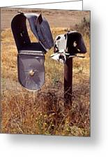 You've Got Mail. Greeting Card