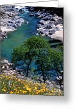 Yuba River In Spring Greeting Card