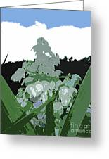 Yucca Blossom Greeting Card