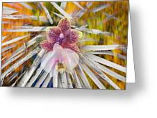 Yucca Dreaming Of Orchids Greeting Card