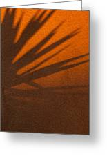 Yucca Shadow Greeting Card