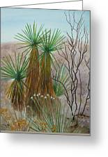 Yucca Stand Greeting Card