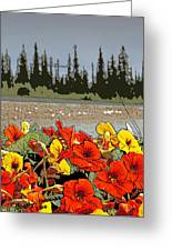 Yukon Flowers Greeting Card