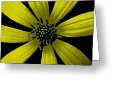 Yummy Yellow Greeting Card