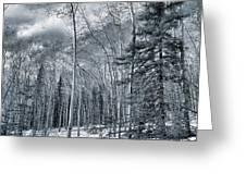 Land Shapes 35 Greeting Card by Priska Wettstein