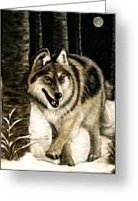 Zane Gray Wolf Greeting Card