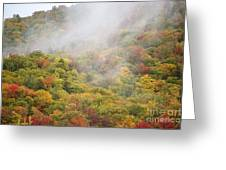 Zealand Road - White Mountains New Hampshire Greeting Card