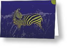 Zebra At Night Greeting Card
