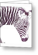 Zebra Colt Greeting Card