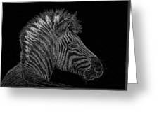 Zebra Computer Drawing Greeting Card