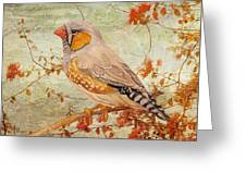 Zebra Finch Among Almond Trees Greeting Card by Angeles M Pomata