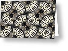 Zebra IIi Greeting Card