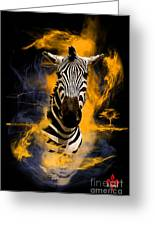 Zebra In Africa Greeting Card