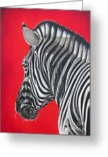 zebra in African sun Greeting Card by Ilse Kleyn