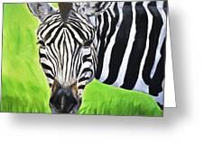 Zebra In The Wild Greeting Card