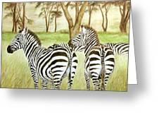 Zebra Pals Greeting Card