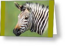 Zebra Portrait Greeting Card by Trevor Wintle